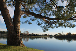Legg Lake in Santa Fe Springs, California
